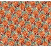 Orange Blossoms Photographic Print