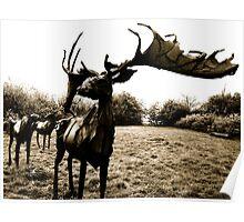 Snibston Deer Sculptures Poster