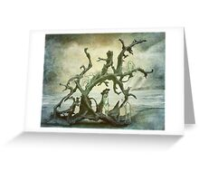 Spirits of the Driftwood Greeting Card