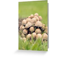 Fungi Collective Greeting Card