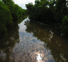 river pitillal II - rio pitillal by Bernhard Matejka