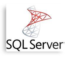 sql server database programming language Metal Print