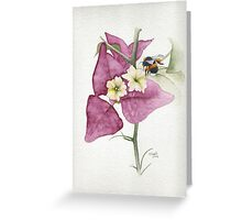 Bougainvillea with Bee Greeting Card