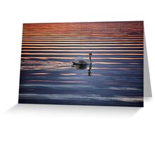 Swan Lake Abstract Greeting Card