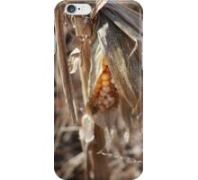 Corn Fed Country iPhone Case/Skin