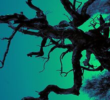 Spooky Branches by bexilla