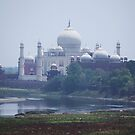 The Taj Mahal from the Old Fort by John Dalkin