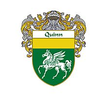 Quinn Coat of Arms / Quinn Family Crest Photographic Print