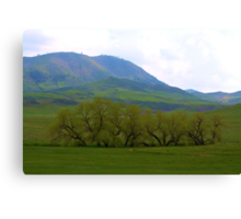 Green valley Canvas Print