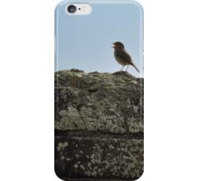 I Will Walk Up and Down Here And I Will Sing iPhone Case/Skin