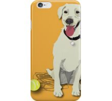 yellow lab with tennis ball iPhone Case/Skin