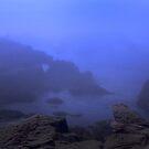 blue fog by Marianna Tankelevich
