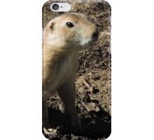 Prairie Dog iPhone Case/Skin