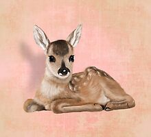 A small fawn by Sparafuori