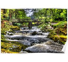Tollymore Forest Park 2 Poster