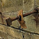 Rusty Bolt by Livvy Young
