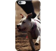 terrier iPhone Case/Skin