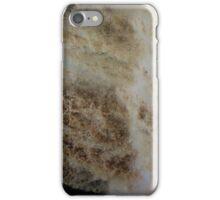 Copper 3 iPhone Case/Skin