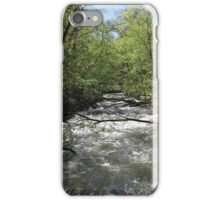 Bridges 2 iPhone Case/Skin