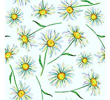 Watercolor daisies pattern Photographic Print