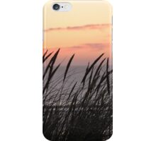Dune Grass At Sunset iPhone Case/Skin