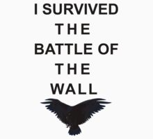 I survived the battle of the wall by icedtees