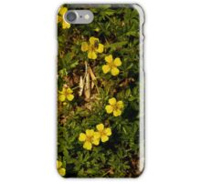 Tormentil in Shalwy Valley iPhone Case/Skin