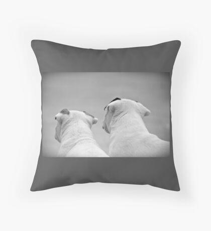 Bull Terrier Siblings Throw Pillow