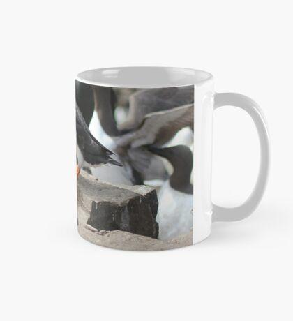 Eels for Meals Mug