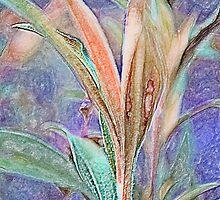 Lavender Unfurling by Susan Nixon