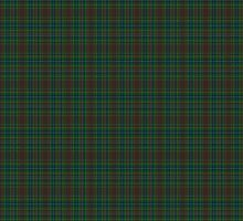 02405 Lady Diana Hunting Fashion Tartan  by Detnecs2013