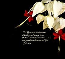 Bleeding Heart and Prayer by Sunshinesmile83