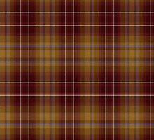 02401 DuPage County, Illinois Fashion Tartan by Detnecs2013