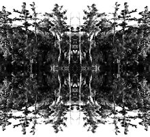 Swamp Trees (Black and White) by StudioBlack