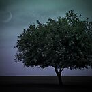 Twilight Tree by Maria Dryfhout