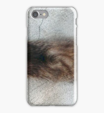 Super Stretch Kitten Horizontal iPhone Case/Skin
