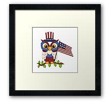 Patriotic Owl Framed Print