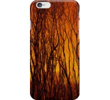 Scorched Branches iPhone Case/Skin