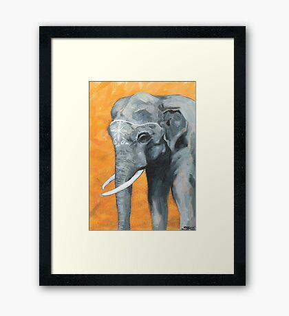 Painted elephant - orange poppy background.  Framed Print