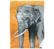 Painted elephant - orange poppy background.  Poster