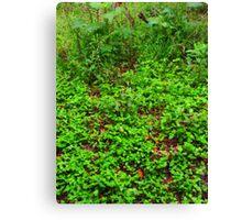 Green world~ Canvas Print