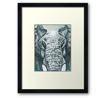 Painted Elephant - Close Up Framed Print