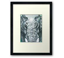 Painted Elephant - Close Up Framed Print