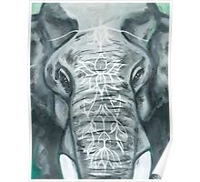 Painted Elephant - Close Up Poster