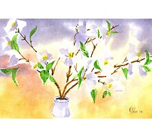 Dogwood in Watercolor Photographic Print