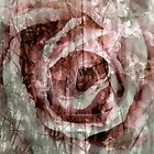 Rose Collage for Tote or Throw Pillow by Lozzar Flowers & Art