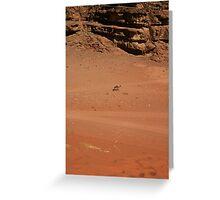 Wandering Camel Greeting Card