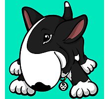 Let's Play English Bull Terrier Black  Photographic Print