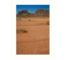 In the deserts of Jordan Art Print