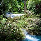 Treasures of Vanuatu by KerryPurnell
